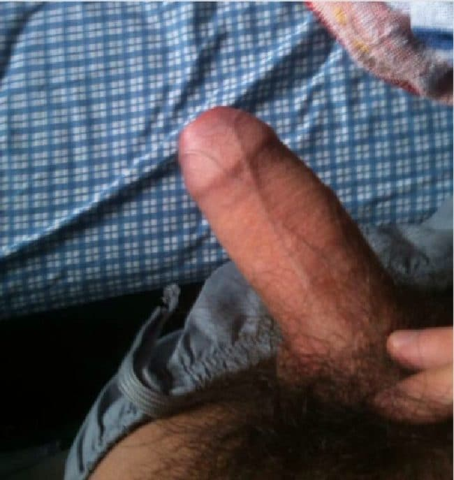 Hairy Uncut Cock