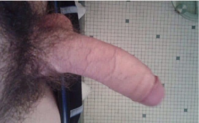 Uncut Hairy Cock